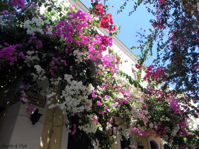 colorful bougainvilleas in Rethymno, Crete
