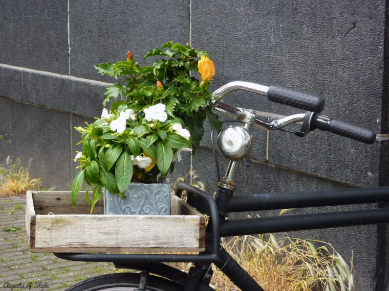 Bicycle and planter in Amsterdam