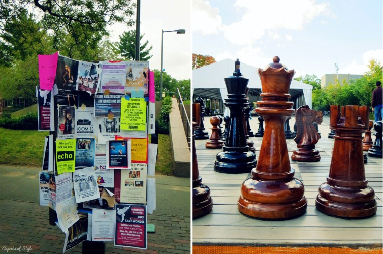 Notice board in Harvard Yard, Chess